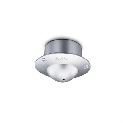 iBall Hidden Dome Special Camera (iB-H6030CS)