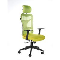 Kruz High Back Office Chair- Green