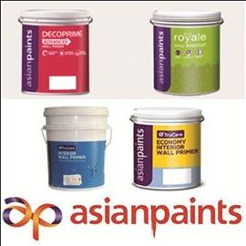 Asian Paints Interior Primer
