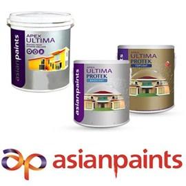 Asian Paints Exterior Ultima