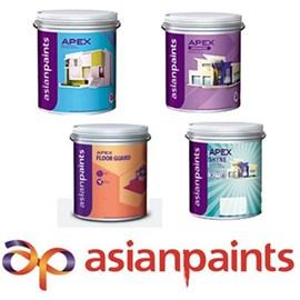 Asian Paints Exterior Apex