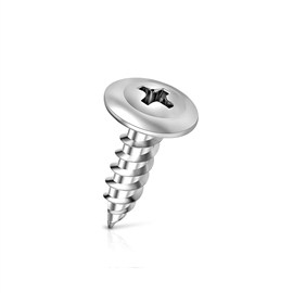 Patta Truss Head Screws 25 mm(1 Case-8000 Pieces)