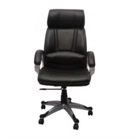 VJ Interior Executive Chair Black 21 x 23 x 48 Inch VJ-149-EXECUTIVE-HB