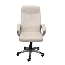 VJ Interior Executive Chair White 21 x 23 x 48 Inch VJ-201-EXECUTIVE-HB